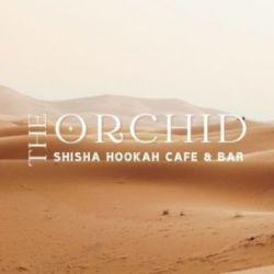ORCHID - オーキッド シーシャバー(静岡シーシャ)